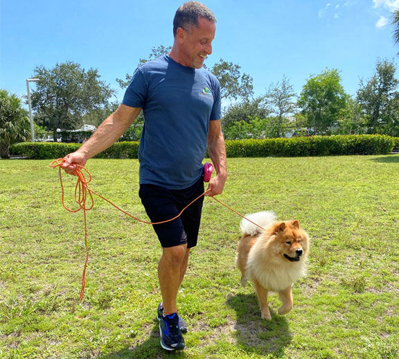 Dog trainer walking with a dog